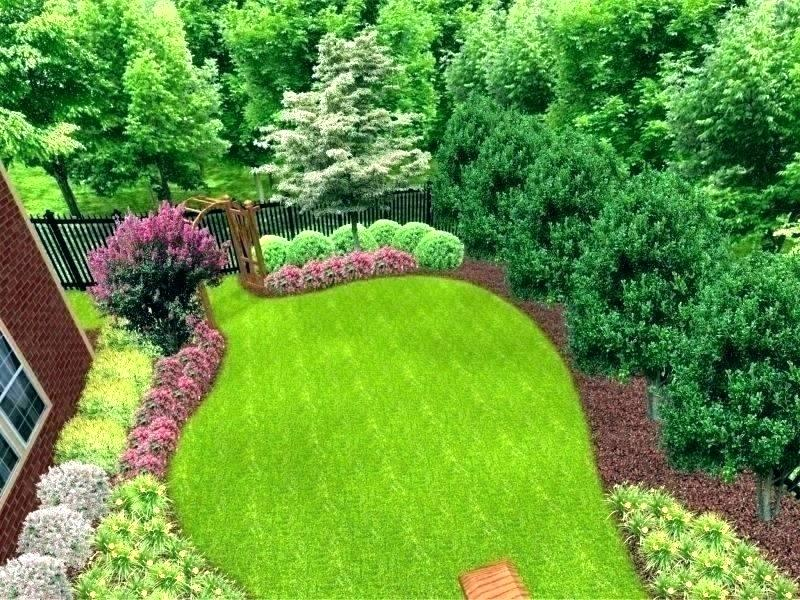 How to Plant a Privacy Tree Fence on Tree Planting Ideas For Backyard id=69495