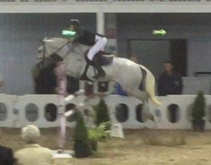 Grey pony jumping at Millstreet