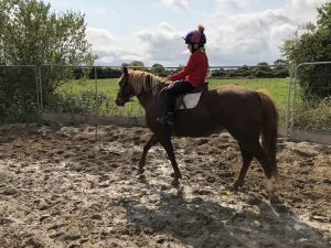 young girl riding a pony at youridewedrive