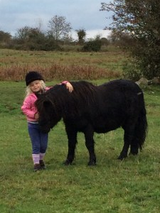 Girl loving her pony!