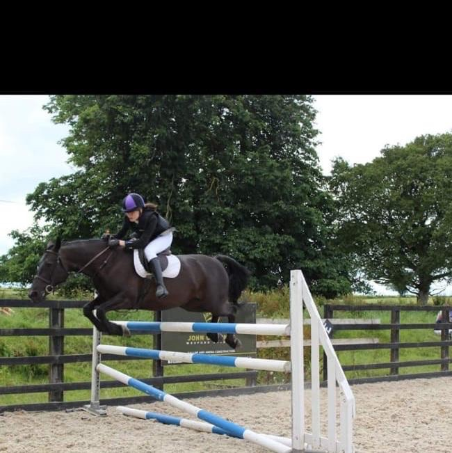 Barnaboy All Black a black pony jumping an upright fence