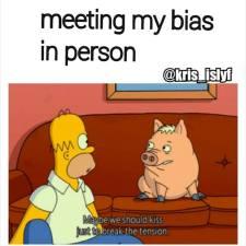 Meeting My Bias Kiss