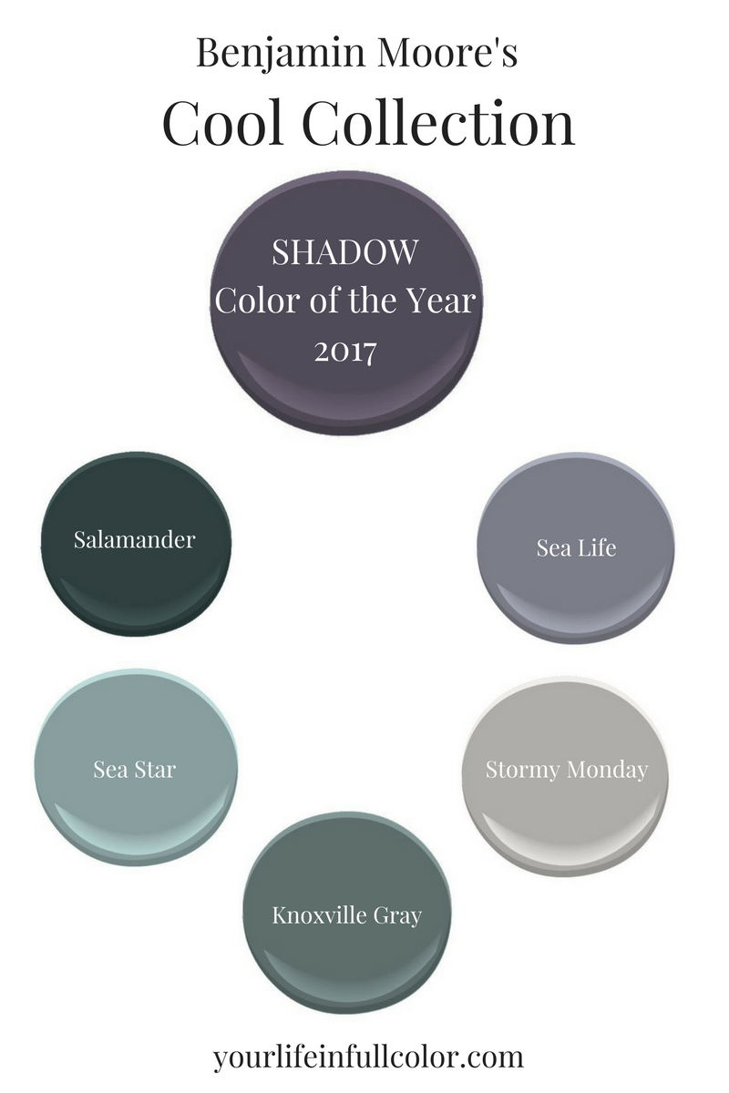 benjamin-moore's-shadow-plus-cool-colors