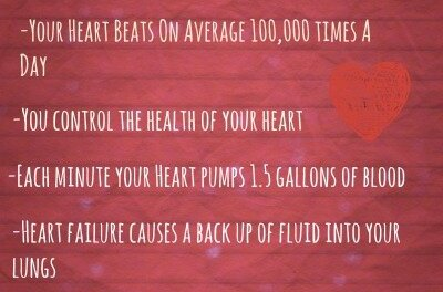 Happy Valentines Day: Seven Amazing Facts You Never Knew About Your Heart
