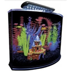 Aquariums & Tanks