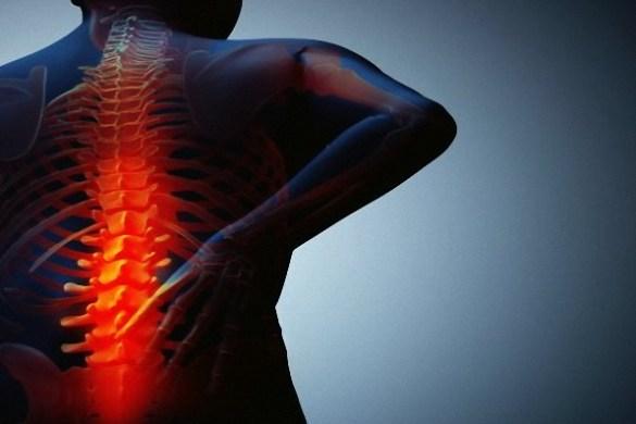 back pain vidya sury
