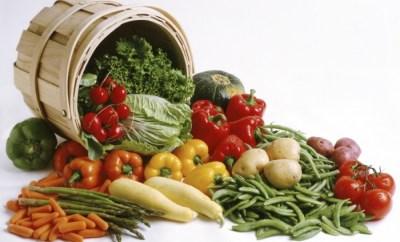 vegetarianism and veganism vidya sury