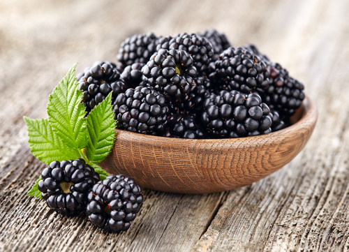 blackberries - ten protein packed vegan weight loss foods