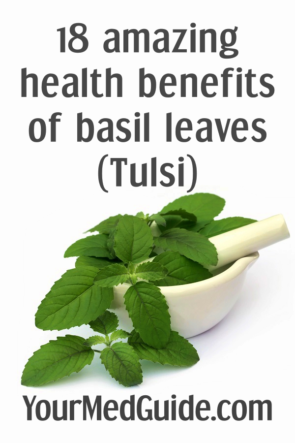 18 amazing health benefits of basil leaves (Tulsi)