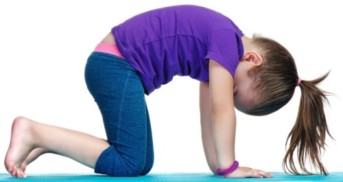 Cat pose yoga poses for kids