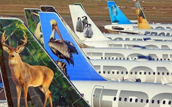 Frontier Airlines.jpg
