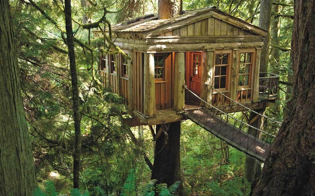 treehouse212