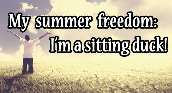sitting-duck-summer