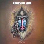 brother ape - karma