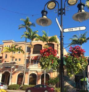 Olde Naples FL listings