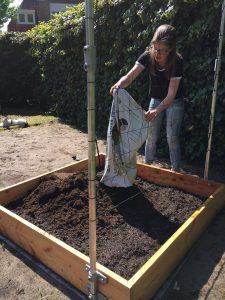 Soil for Square Foot Gardening box