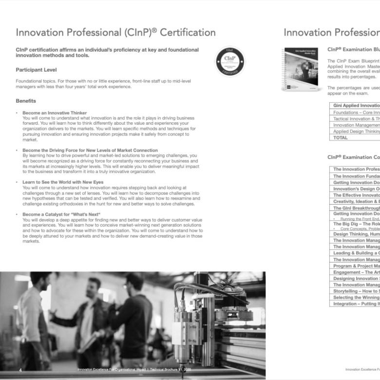 ESQL World GINI Training Technical Brochure Design