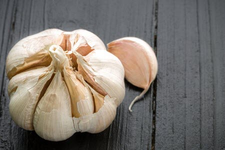 garlic for dogs