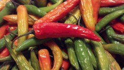 Peppers1a