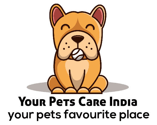 Your Pets Care India