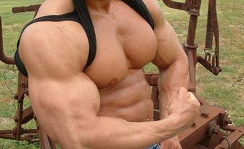 Research Team Claims Bodybuilding Supplements could Provoke Eating Disorders