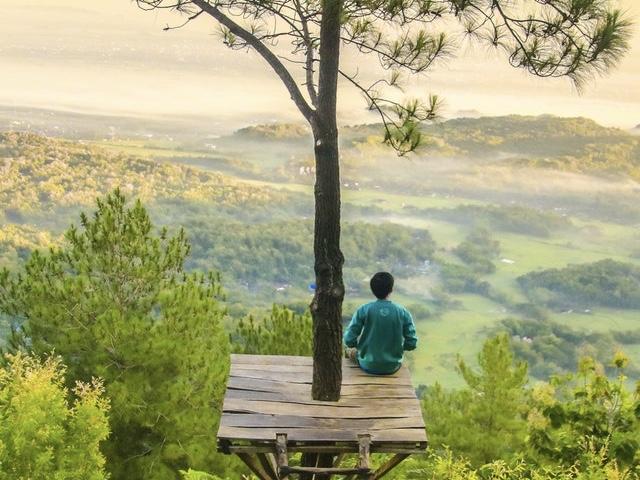 Vipassana Meditation for Inner Transformation