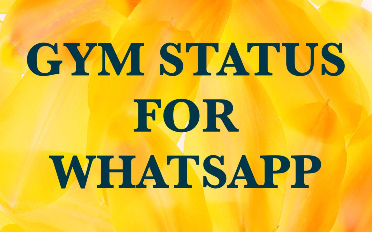 Gym Motivational Status For Whatsappfacebook Quotes