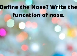 Define the nose? Write the funcation of nose