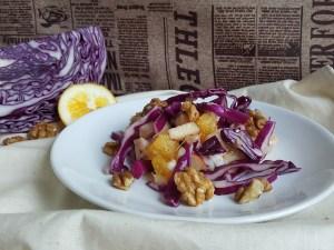 salade de chou naturopathie nature ferme bio yourte végétale saint françois longchamp savoie bien être