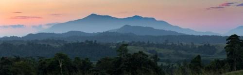 Atherton Tablelands | Mount Bartle Frere