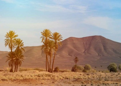 6 Days Desert Tour From Tangier to Marrakech