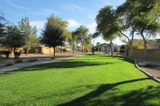 Grassy park near 353 E Jasper Dr, Chandler Arizona - Community park - Bill Salvatore, Arizona Elite Properties 602-999-0952 - Arizona Real Estate