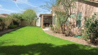 long grassy area with mature trees at either end - 417 E Sheffield Ave, Chandler AZ - Plenty of space for play or pets - Bill Salvatore, Arizona Elite Properties 602-999-0952 - Arizona Real Estate