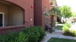 Front of building with flowering bushes and palm trees - Rox Condominiums - 5401 E Van Buren St, Phoenix AZ - Unit #3002 - Third floor condo, 2 bedrooms, 2 baths - Bill Salvatore, Arizona Elite Properties 602-999-0952 - Arizona Real Estate