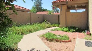 Front courtyard with perennial garden and bushes, small bricked patio and cement walkway - 945 N Pasadena, Mesa AZ - Park Centre Patio Homes - Bill Salvatore, Arizona Elite Properties 602-999-0952 - Arizona Real Estate
