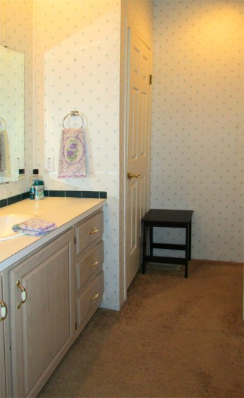 Large bathroom vanity with white countertop, linnen closet, tub with shower, carpeted floor - Good size master bedroom with bath - 161 N 88th Place, Mesa AZ - Bill Salvatore, Arizona Elite Properties - Mesa Arizona property for sale