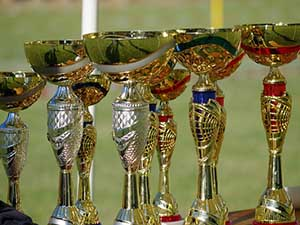 trophies champion field