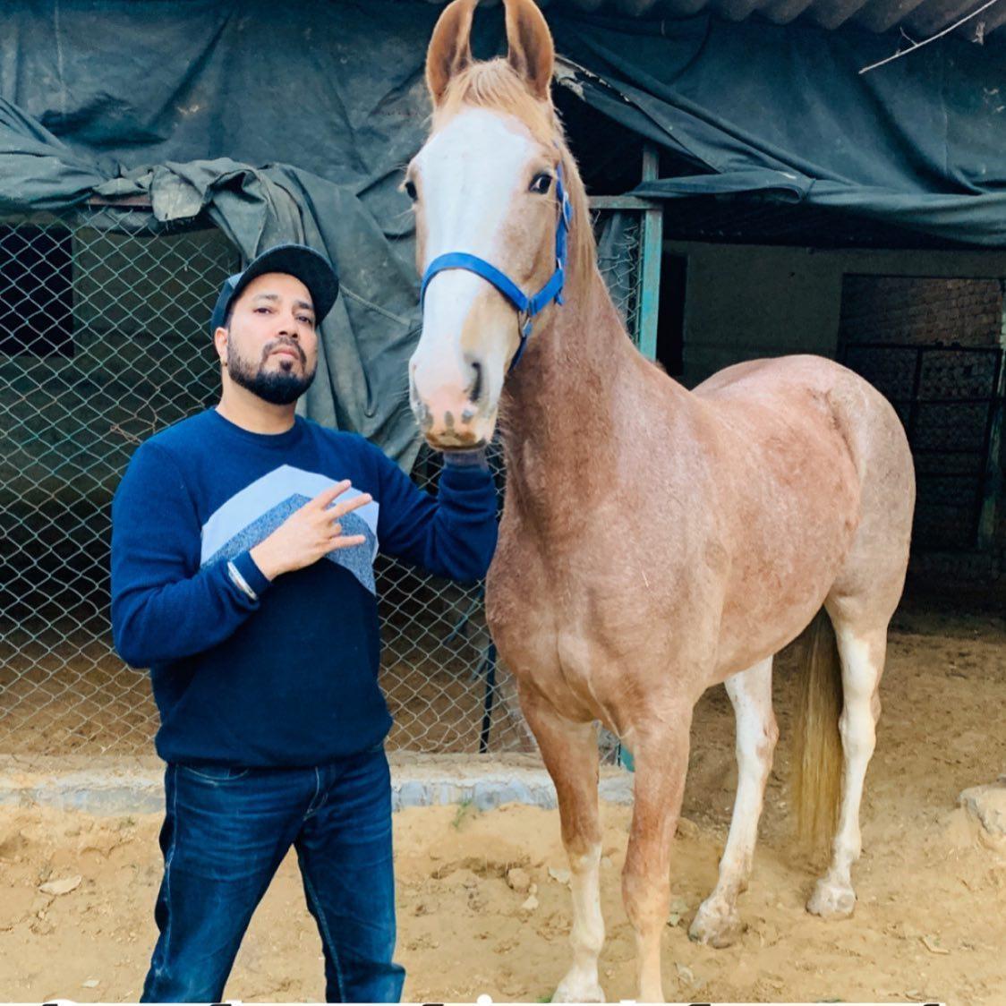 Mika Singh Horse