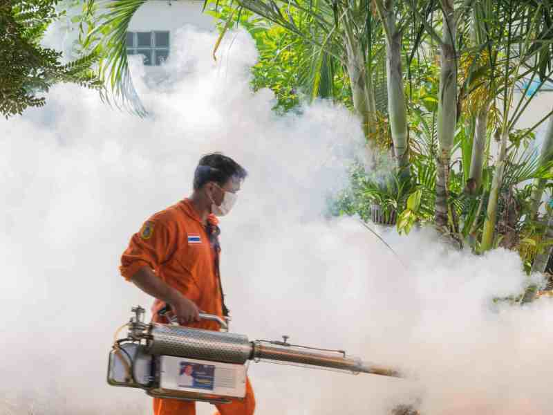 do mosquito foggers work, How To Fog Your Yard For Mosquitoes-Do Mosquito Foggers Work?