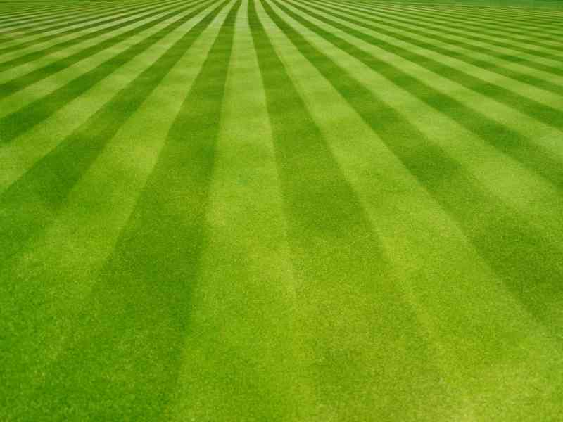 how to stripe your lawn without a striper, How To Stripe Your Lawn Without a Striper