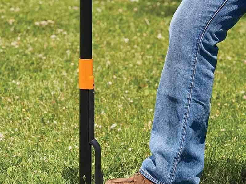 best tool for removing weeds dandelions, Best Tool For Removing Weeds and Dandelions
