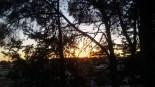 Cum pleacă soarele-n amurg...