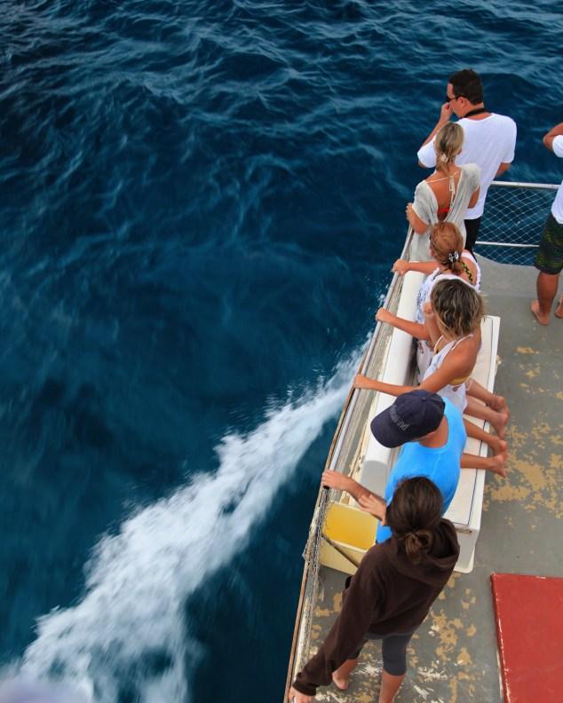 Fernando de Noronha Boat Tour people