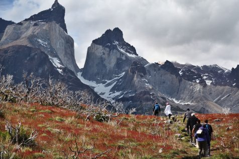 Torres del Paine National Park trekking