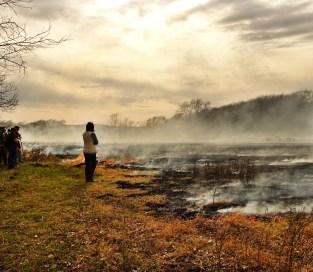 Flying W Ranch burnt field