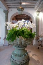 Les Pres d'Eugenie flowers