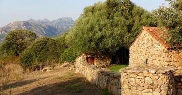 Domaine de Murtoli A Tiria backyard