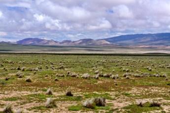 Ruta 33 Altiplano Salta desert