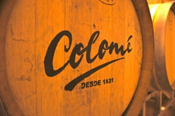 Colomé vineyards barrel