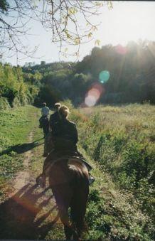 Villa Cerretello horseback riding